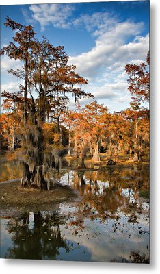 Metal Print featuring the photograph Cypress Rust by Lana Trussell