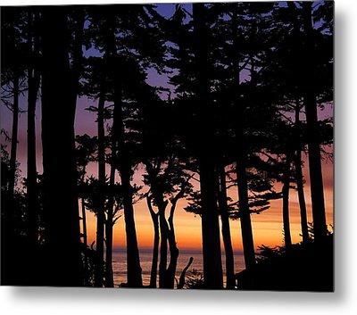 Cypress Sunset Metal Print by Derek Dean