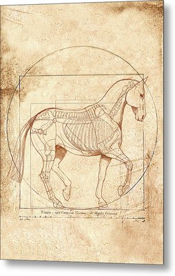 da Vinci Horse in Piaffe Metal Print by Catherine Twomey