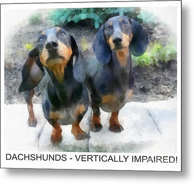 Dachshund Poster Metal Print by Betsy Cotton