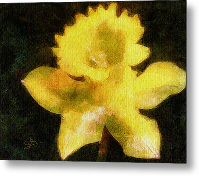 Metal Print featuring the painting Daffodil by Greg Collins