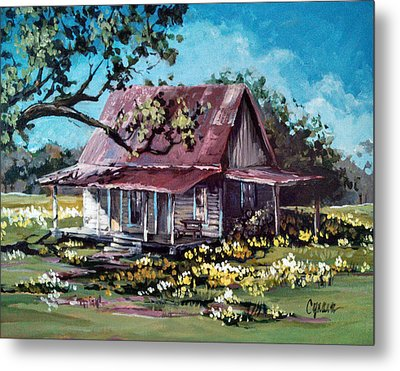 Daffodil Hill Metal Print