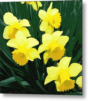 Daffodil Song Metal Print by Pamela Hyde Wilson