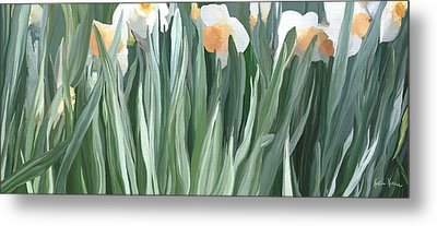 Daffodils In The Midst Metal Print