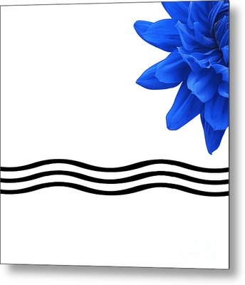 Dahlia Flower And Wavy Lines Triptych Canvas 3 - Blue Metal Print by Natalie Kinnear