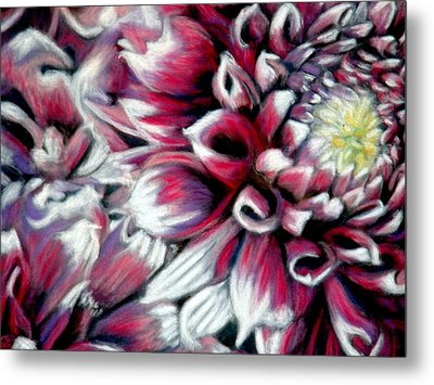 Metal Print featuring the pastel Dahlias In Pastel by Antonia Citrino