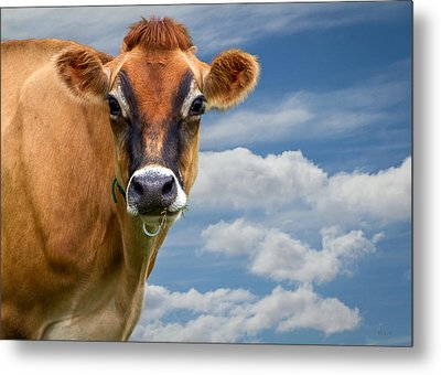 Dairy Cow  Bessy Metal Print by Bob Orsillo