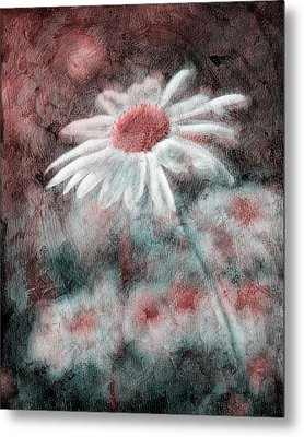 Daisies ... Again - P11ac2t1 Metal Print by Variance Collections
