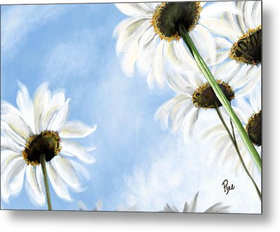 Daisies Metal Print by Maria Schaefers
