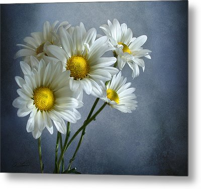 Daisy Bouquet Metal Print by Ann Lauwers