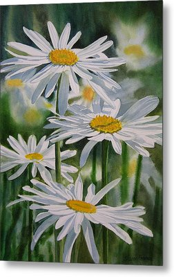 Daisy Garden Metal Print by Sharon Freeman