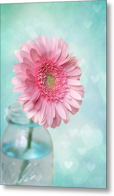 Daisy Love Metal Print by Amy Tyler