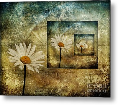 Daisy Shadows Metal Print by Shirley Mangini