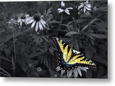 Dance In The Garden Metal Print