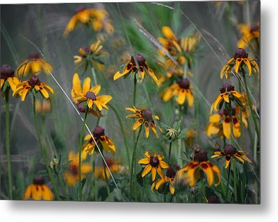 Metal Print featuring the photograph Dance Of Flowers by Susan D Moody