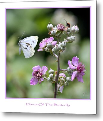 Dance Of The Butterfly Metal Print