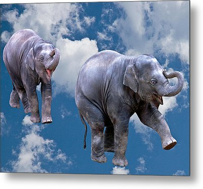 Dancing Elephants Metal Print