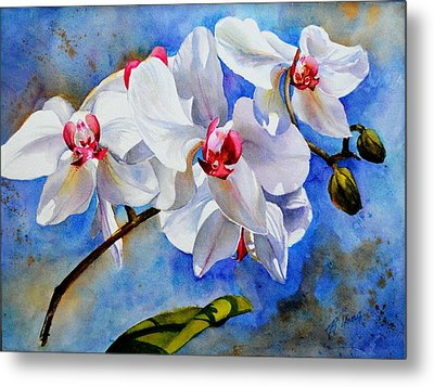 Dancing Orchids Metal Print by Betty M M   Wong