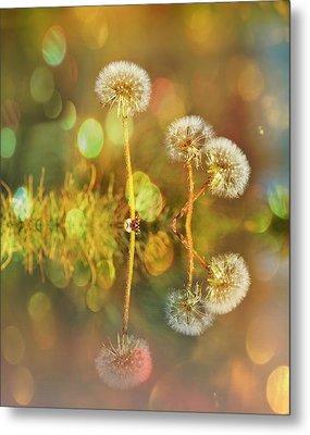 Dandelion Delight Metal Print