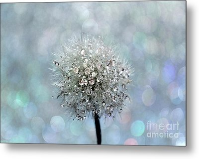 Dandelion Diamonds Metal Print by Krissy Katsimbras