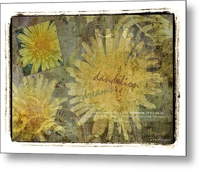 Dandelion Dreams Metal Print