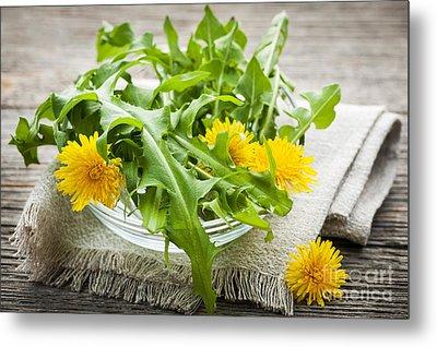 Dandelions Greens And Flowers Metal Print by Elena Elisseeva