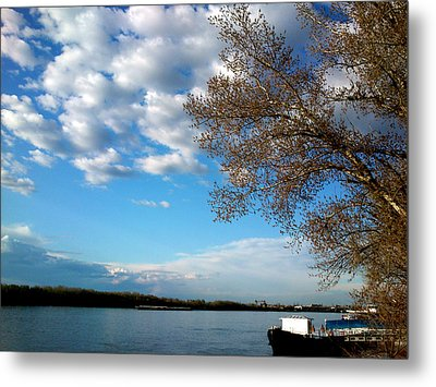 Metal Print featuring the photograph Danube by Lucy D