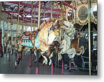 Metal Print featuring the photograph Dapled Pony by Barbara McDevitt