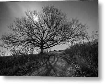 Dark And Twisted Metal Print by Kristopher Schoenleber
