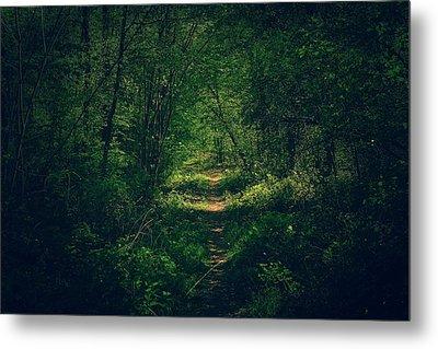 Dark Forest Metal Print by Daniel Precht