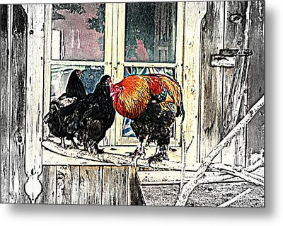 Darling, Stay At Home, It's Cold Outside Metal Print