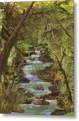 Dartmoor River Metal Print by Carol Rowland