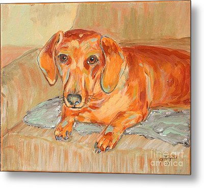 Metal Print featuring the painting Daschund Portrait by Jeanne Forsythe