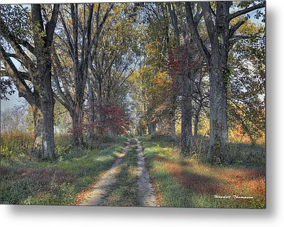 Daviess County Lane Metal Print by Wendell Thompson
