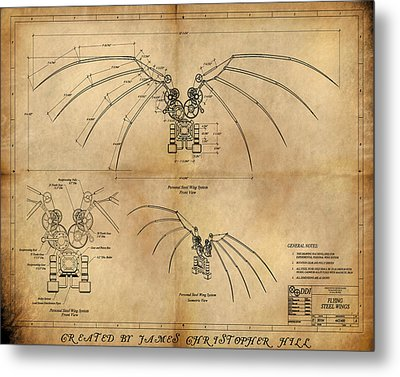 Davinci's Wings Metal Print