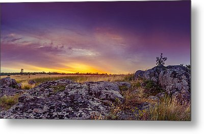 Dawn At Steppe Metal Print