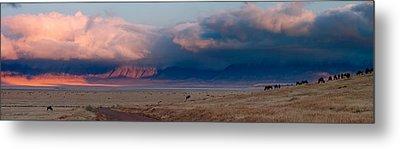 Dawn In Ngorongoro Crater Metal Print by Adam Romanowicz