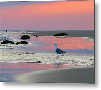 Dawn In Pink Metal Print by Dianne Cowen