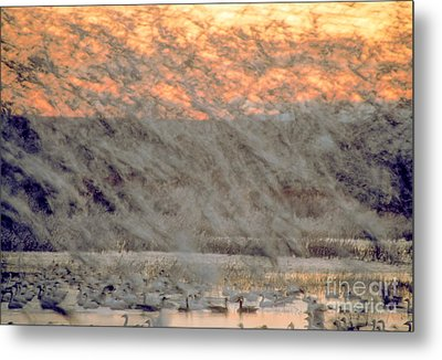 Dawn Liftoff Metal Print by Steven Ralser