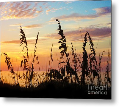 Dawn Metal Print by Megan Dirsa-DuBois