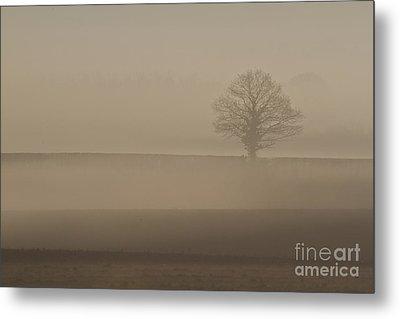 Metal Print featuring the photograph Dawn Mist  by Gary Bridger