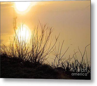 Metal Print featuring the photograph Dawn Of A New Day by Robyn King