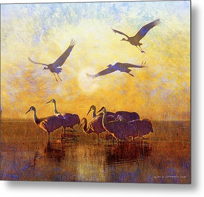 Dawn On The Bosque Sandhill Cranes Metal Print by R christopher Vest