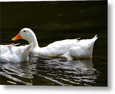 Day At The Lake Metal Print by Kathy Eickenberg