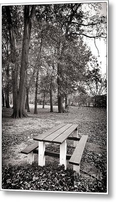 Day At The Park Metal Print by John Rizzuto