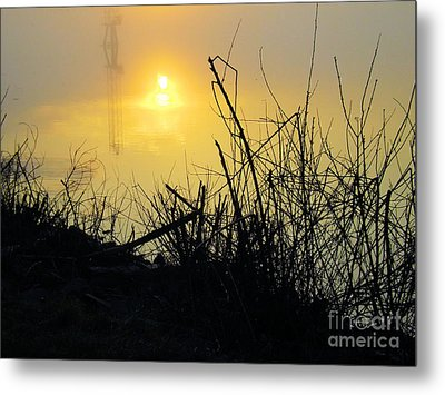 Metal Print featuring the photograph Daybreak by Robyn King