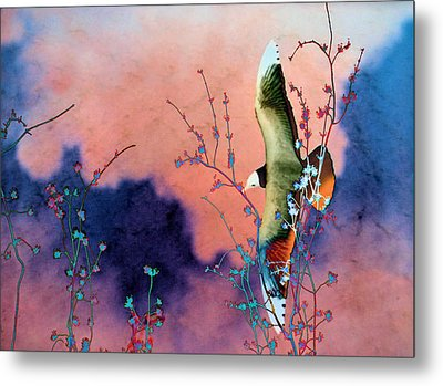 Day Dreaming Metal Print by Jan Amiss Photography