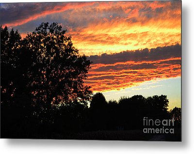 Day Is Done Metal Print by Luther   Fine Art