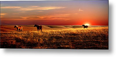 Day Is Done Metal Print by Rod Seel