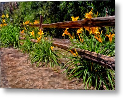 Day Lilies Metal Print by Michael Pickett